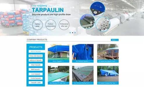 产品展示型网站.jpg